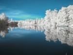 Massey Lake