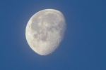 Macro Moon