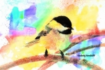 Painted Chickadee