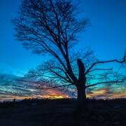 Grey Highland Sunset