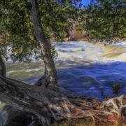 Sauble Falls and Cedar