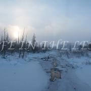 Wodehouse Winter